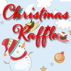 Christmas Raffle Winners
